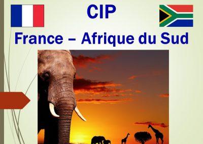 France – Afrique du Sud