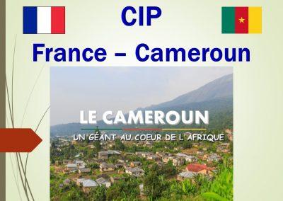 France – Cameroun