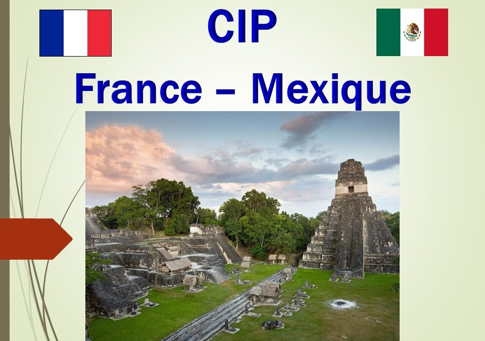 France – Mexique